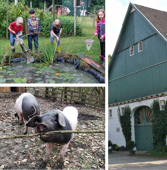 3 Bilder: Kinder spielen an einem Teih, Schweine an der freien Lust, ein Bauernhaus